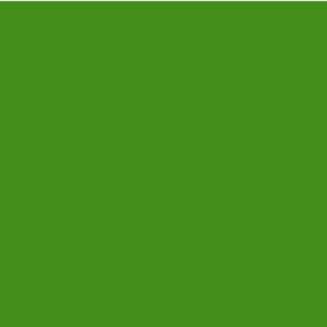 EZ Fire Enamel - Grass Green - 1 oz.