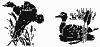 Rub'N'Etch Ducks