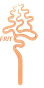 Tangerine Boro Frit (8 oz) - Fine