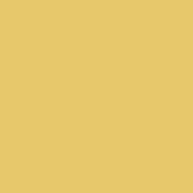 Color Magic Bright Gold Opal ++