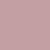 Color Magic Flesh Tone Opal ++