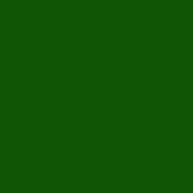 Color Magic Kelly Green Opal ++