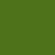 Color Magic Leaf Green Transparent ++