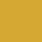 Color Magic Lemon Yellow Transparent ++