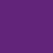 Color Magic Vivid Purple Transparent ++