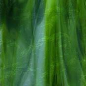 Dark and Lime Green / Opal Granite Catspaw