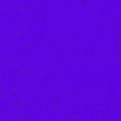 Dark Cobalt Blue Cathedral