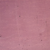 Lighter Purple Cathedral Granite