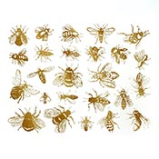 Bees Gold Decals