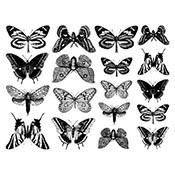 Butterflies Black Decals