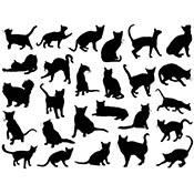 Cats Black Decals