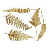Ferns Gold Decals