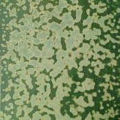 Oceana Dark Chrome Green