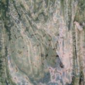 Oceana White/ Dark Green