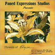 Flowers of Elyse CD