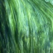 Dark Green / Opal / Crystal Wisspy